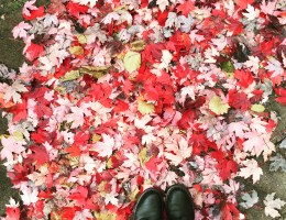 Fashion and Beauty Autumn Essentials: Prepping For The Cold