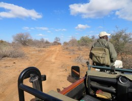 Travel: Our South Africa Honeymoon Itinerary