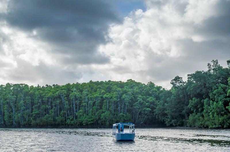 traversee en barge sur la daintree river