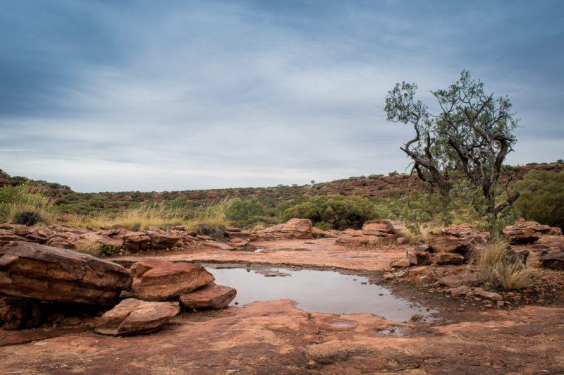 trou d'eau à king's canyon