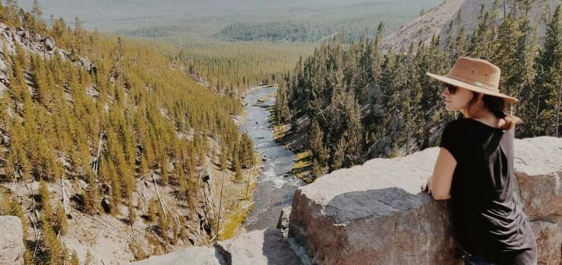 vue sur les gibbon Falls de yellowstone