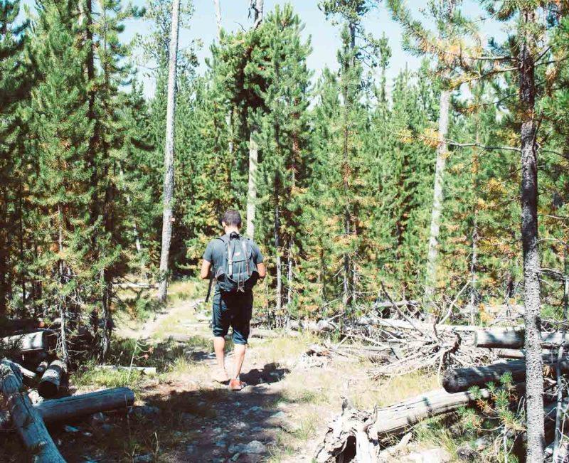 randonnée fairy Falls Trail dans le parc de yellowstone