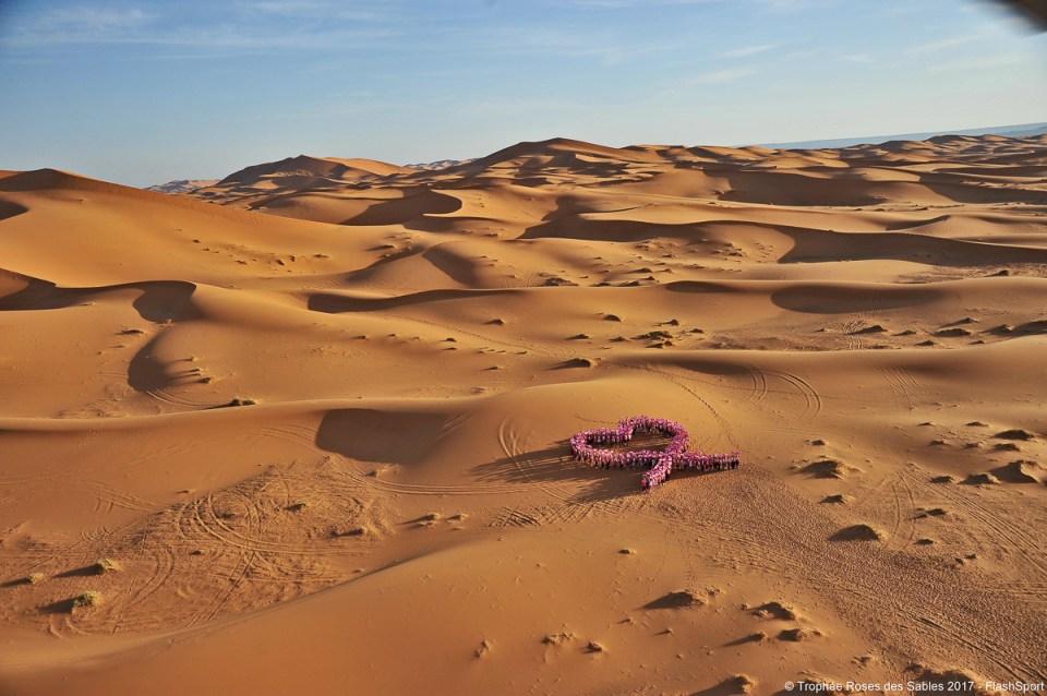 photo symbolique dans le desert contre le cancer du sein