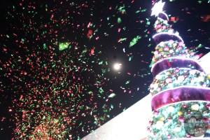 Holiday Wonderfair