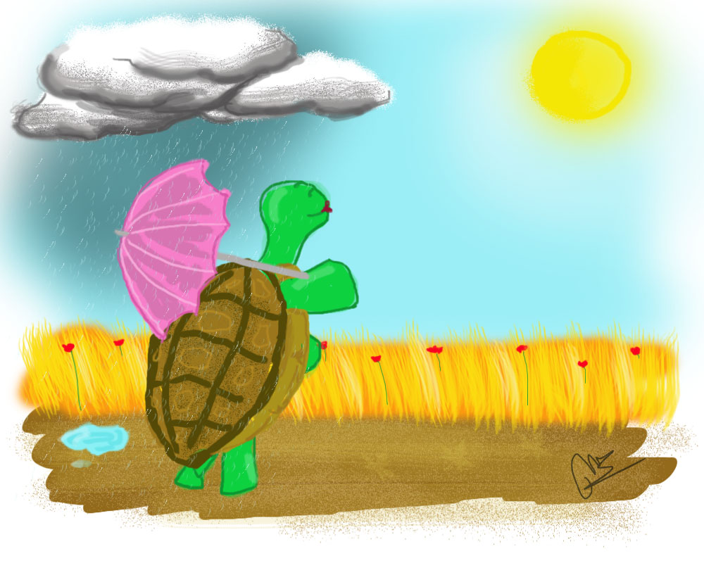 La tortuga Amapola
