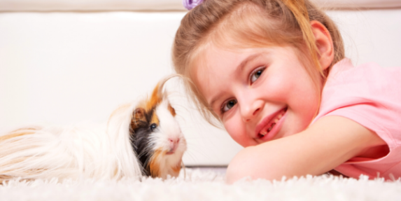 a long-haired guinea pig and a smiling child