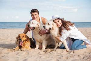 Everything Pet Parents Need to Know