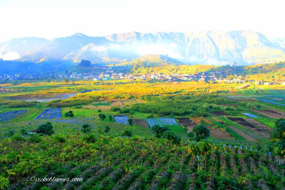 Dieng Plateau | Places to Visit in Indonesia | Hello Raya Blog