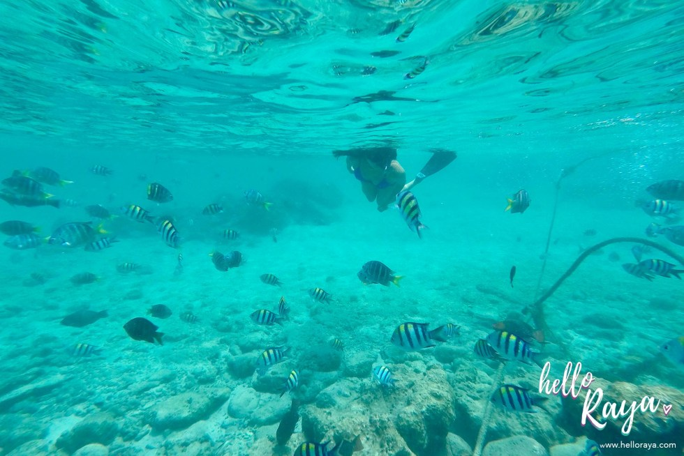 Incredible Things to do in Pulau Weh - Snorkeling | Hello Raya Blog