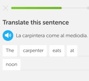 duolingo weird sentence spanish