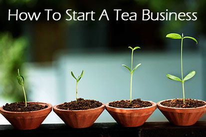 Why You Should or Should NOT Start A Tea Business