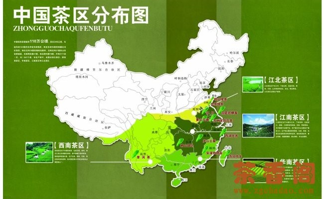 Tea Production in China: 4 Main Tea Growing Regions