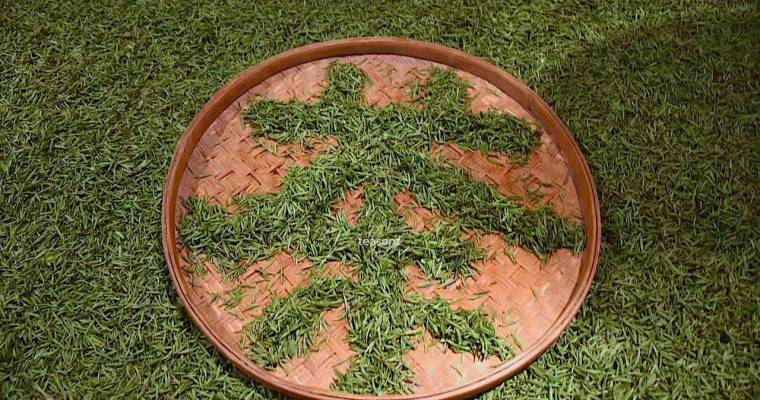 The Chinese Character Tea Depicted Using Tea Leaves