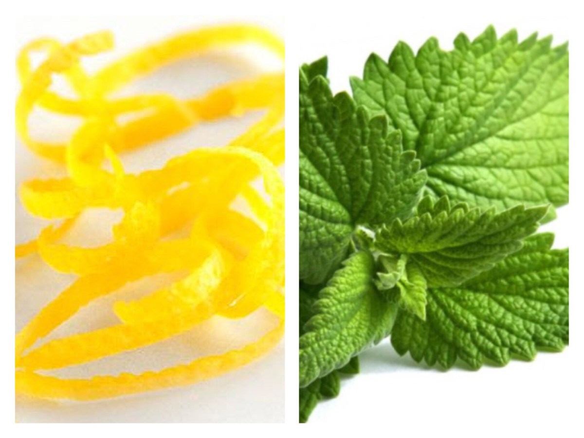 Lemon Zest and Mint