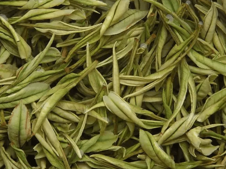 Brewed tea leaves