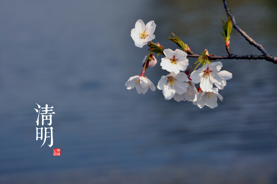 The Qingming Festival: History, Origin & Customs Explained