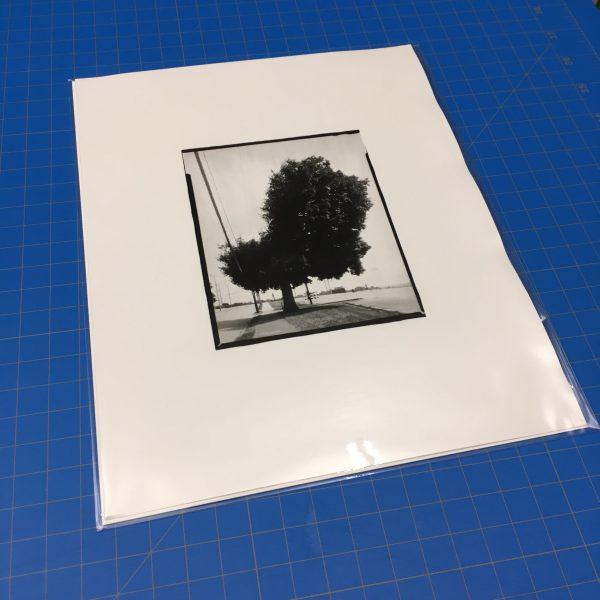 Tree, Green Street packaged in clear envelope.