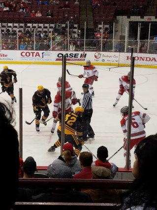 Hockey...Hmmm, I may have found my first and only sport to love...