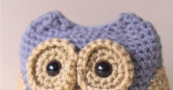 Dusk the Baby Owl