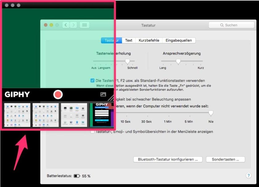 Giphy Capture App: Aufzeichnungsfenster