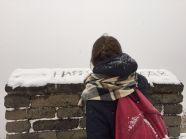 The Great Wall - Mutianyu, China
