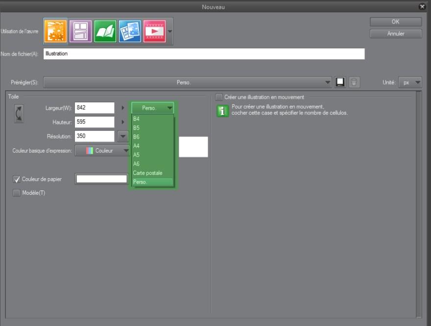menu des dimensions de fichier dans clip studio paint
