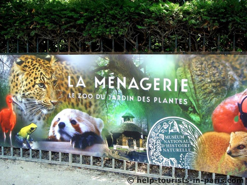 Zoo-Besuch in der Ménagerie in Paris