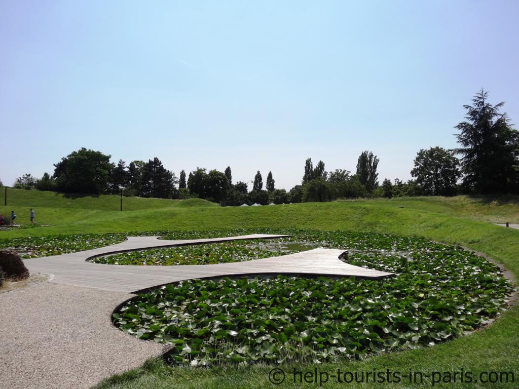 Seerosen in Parc Floral