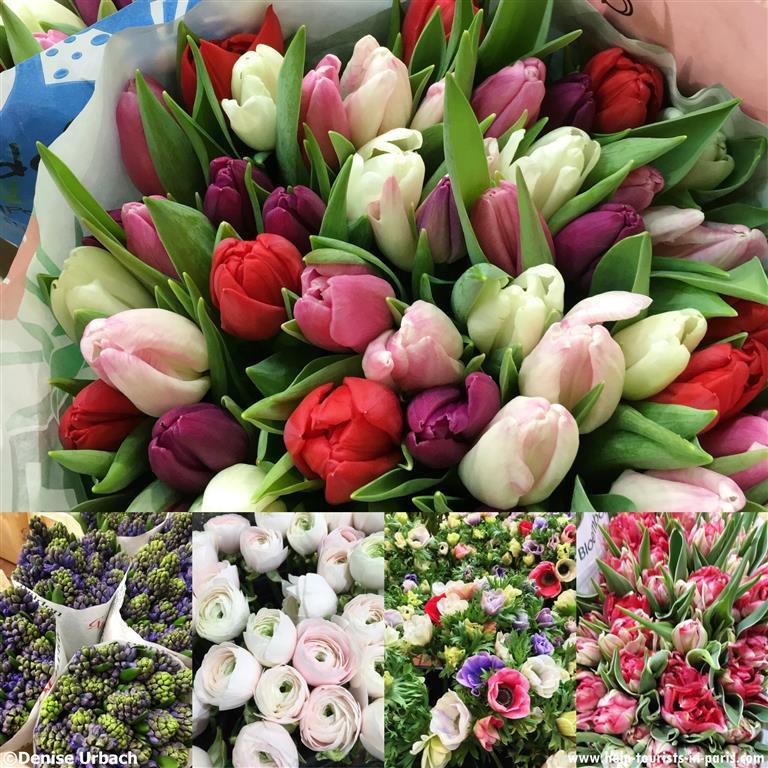Blumen Rungis Großmarkt