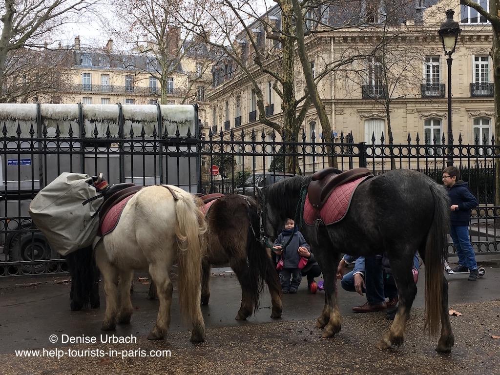 ponyreiten-paris