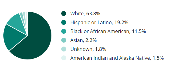 construction workforce demographics by race
