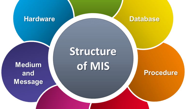 Top 10 Characteristics and Applications of MIS