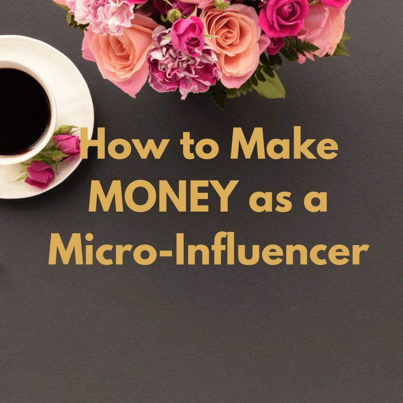 I've got a course to help small bloggers or micro-influencers earn money.