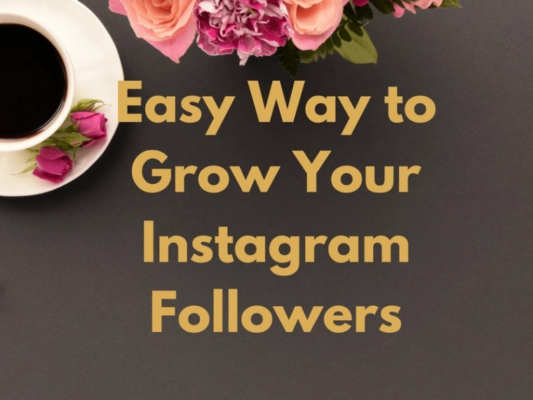Everyone is looking to get new Instagram Followers. MiloTree is an automated popup that works with Pinterest, Facebook, etc with almost zero effort.