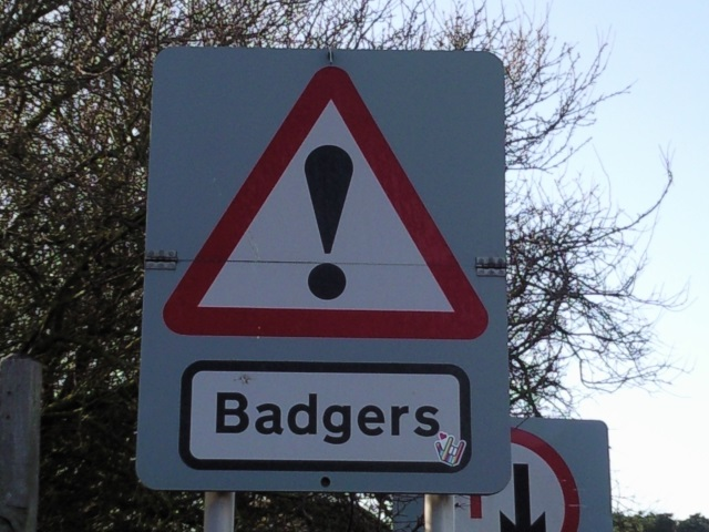 Sign: Badgers!
