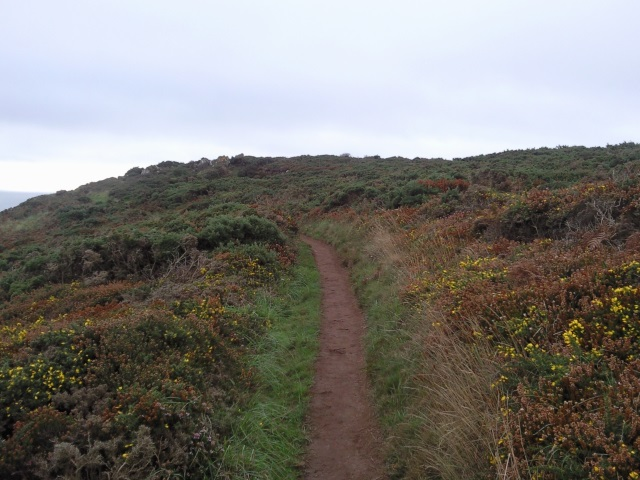 The path approaching Black Head