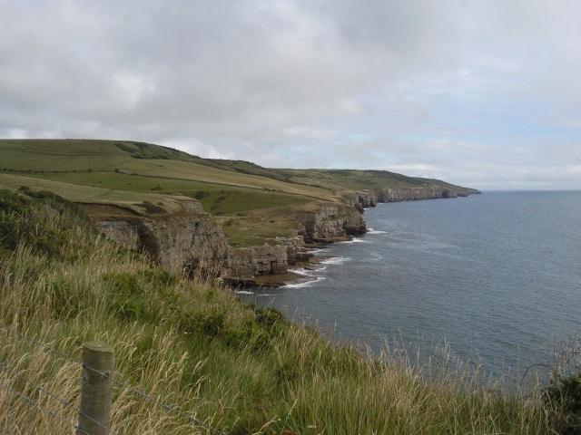 The undulating Dorset coast