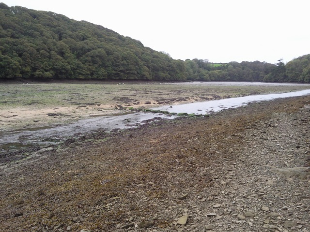 Stepping Stones in Gillan Creek at low tide