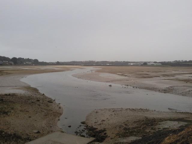 Hayle Estuary as seen from Lelant Saltings