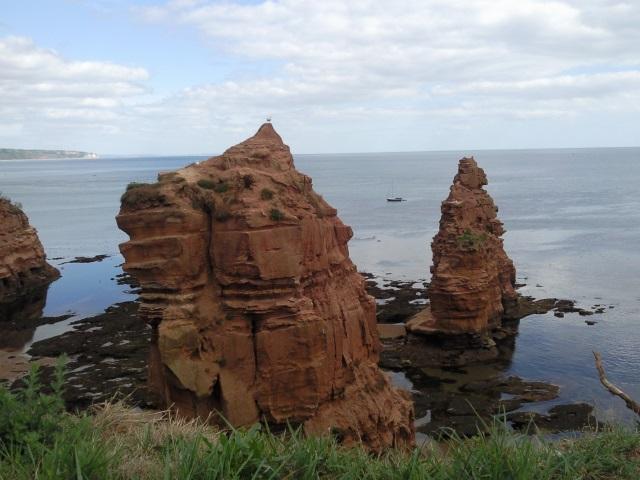 Sandstone stacks in Ladram Bay