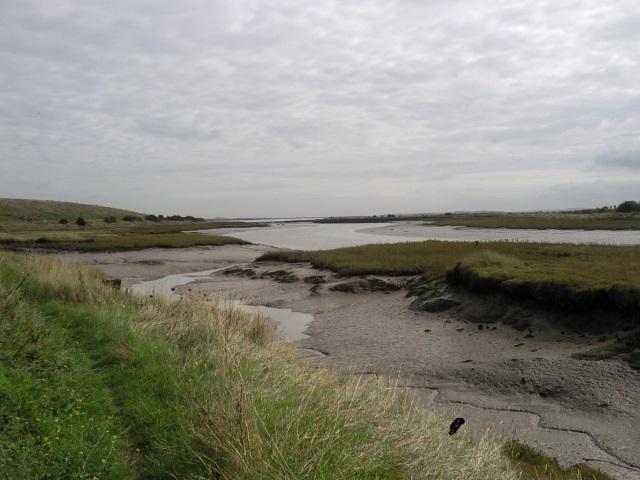 Milton Creek at lowish tide exposing mud