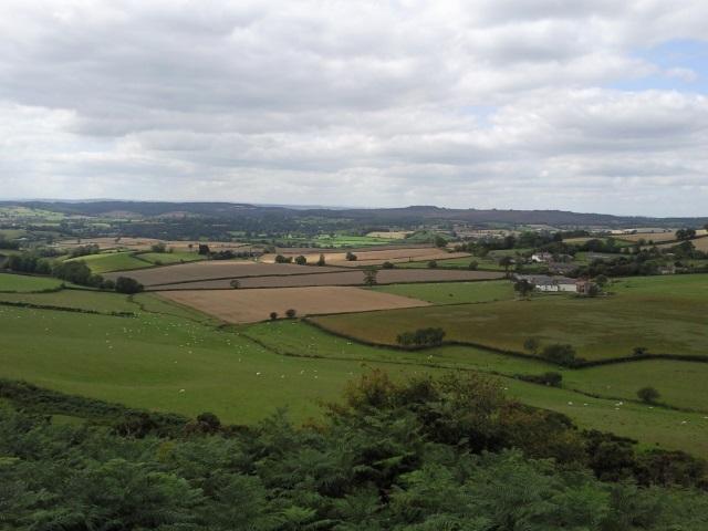A vista of rolling green fields