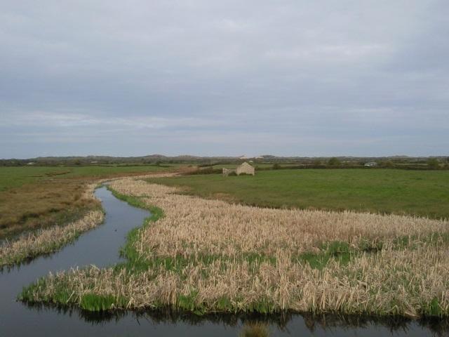 Braunton Marshes