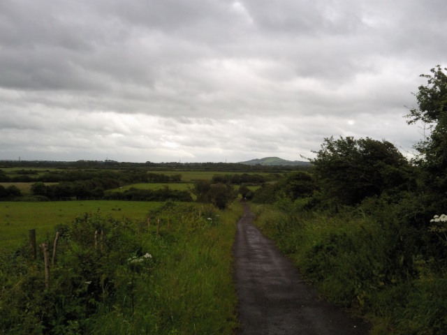 Brent Knoll as seen from Uphill