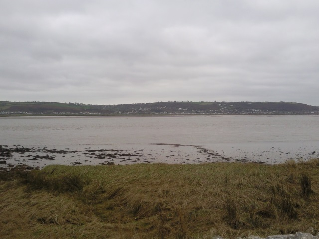 Penclawdd as seen from the opposite bank of the Loughor