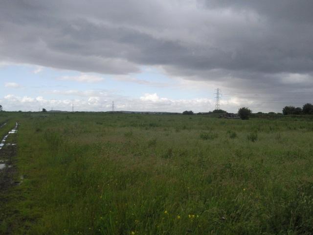 Waterlogged footpath through a field at Pilhay Farm