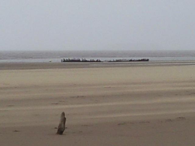 Wreck of SS Nomen, Berrow