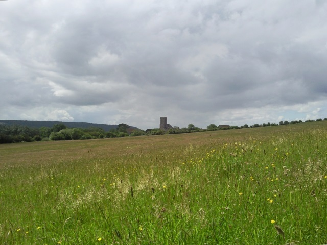 Woodspring Priory from across a field