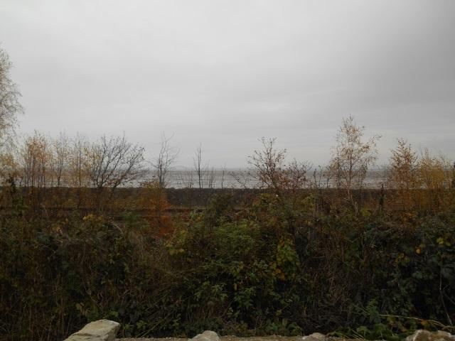 Mostyn View Point