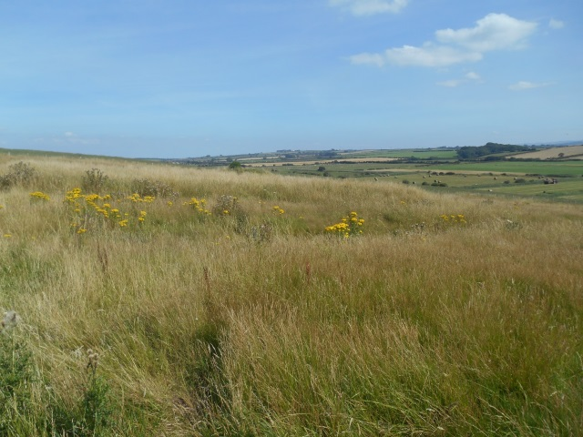 Milefortlet 21 - actual view on the ground